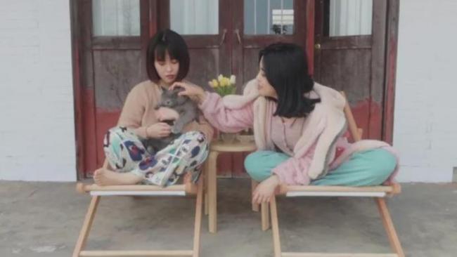 """另类躺平?- 记两位年轻成都女孩""""伺菊南山下的田园生活"""""""