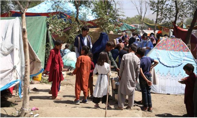 中国政法大学学者建议接收阿富汗难民...遭炮轰后迅速撤文